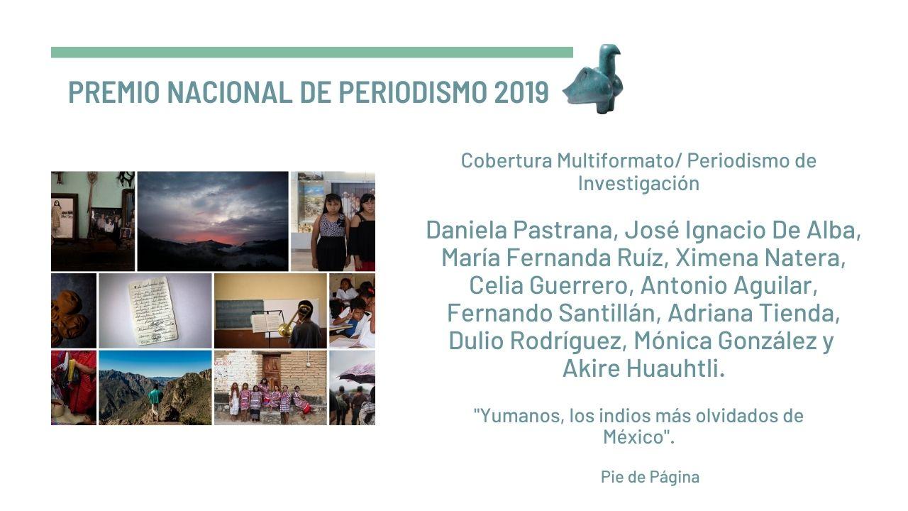 Pie de Página cosecha dos Premios Nacionales de Periodismo 2019
